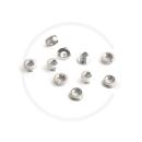 Kettenblattschrauben Campagnolo Pista FC-PI100 | Stahl | silber (5 Stück)